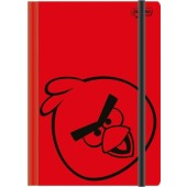 Caderneta grande Angry Birds - Jandaia